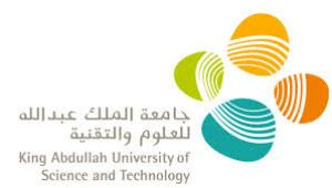 KAUST-Fellowship